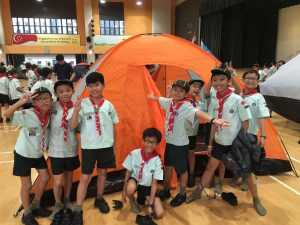 image-3_scouts